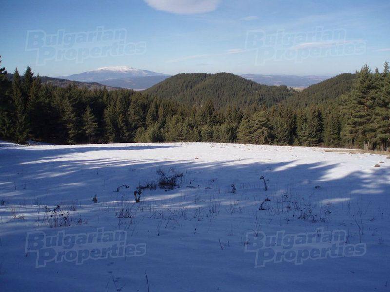 Земля в Боровце, Болгария - фото 1