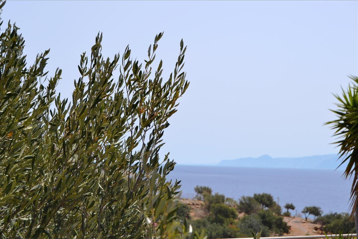 Земля в Ласити, Греция, 3502 м2 - фото 1