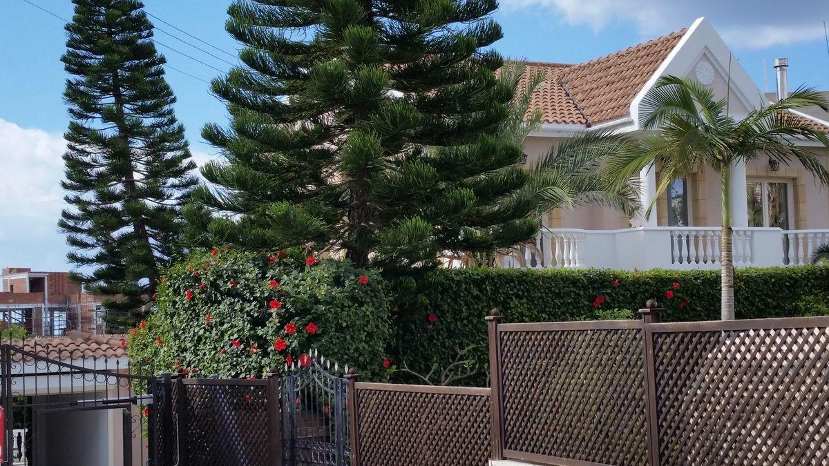 Вилла в Лимассоле, Кипр, 725 м2 - фото 1