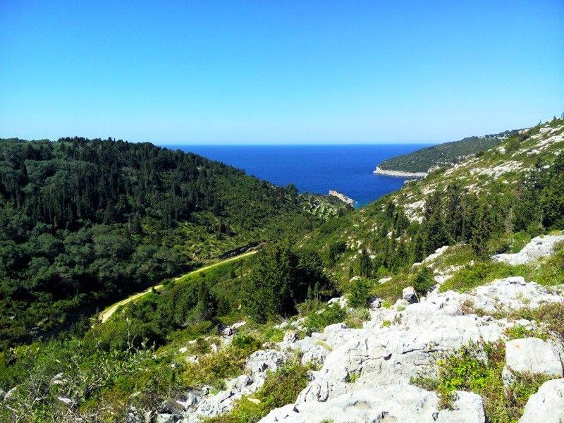 Земля в Сивоте, Греция, 5000 м2 - фото 1