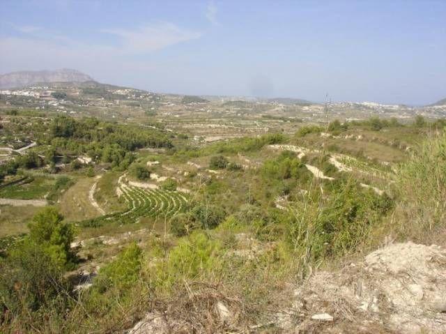 Земля в Морайре, Испания, 11600 м2 - фото 1