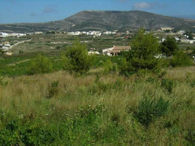 Земля в Морайре, Испания, 850 м2 - фото 1