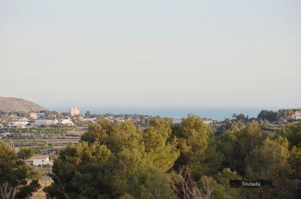 Земля в Теуладе, Испания, 10007 м2 - фото 1