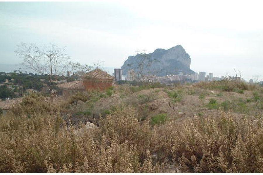 Коста бланка недвижимость земельные участки