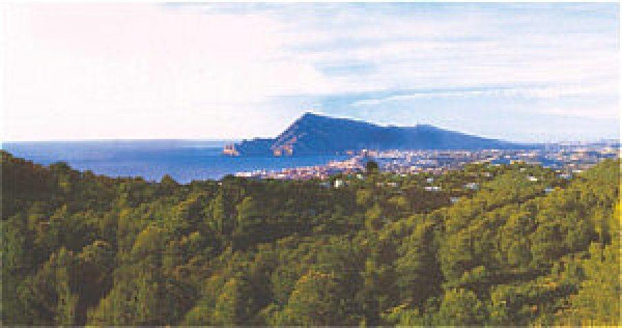 Апартаменты в Альтеа, Испания - фото 1