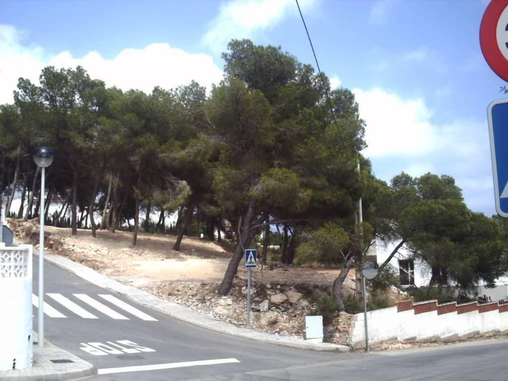 Земля в Морайре, Испания, 878 м2 - фото 1