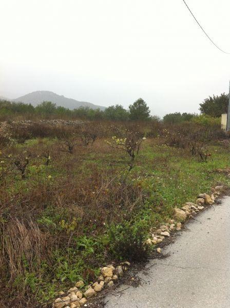 Земля в Халоне, Испания, 10300 м2 - фото 1