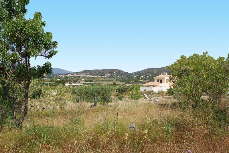 Земля в Бенисе, Испания, 12000 м2 - фото 1