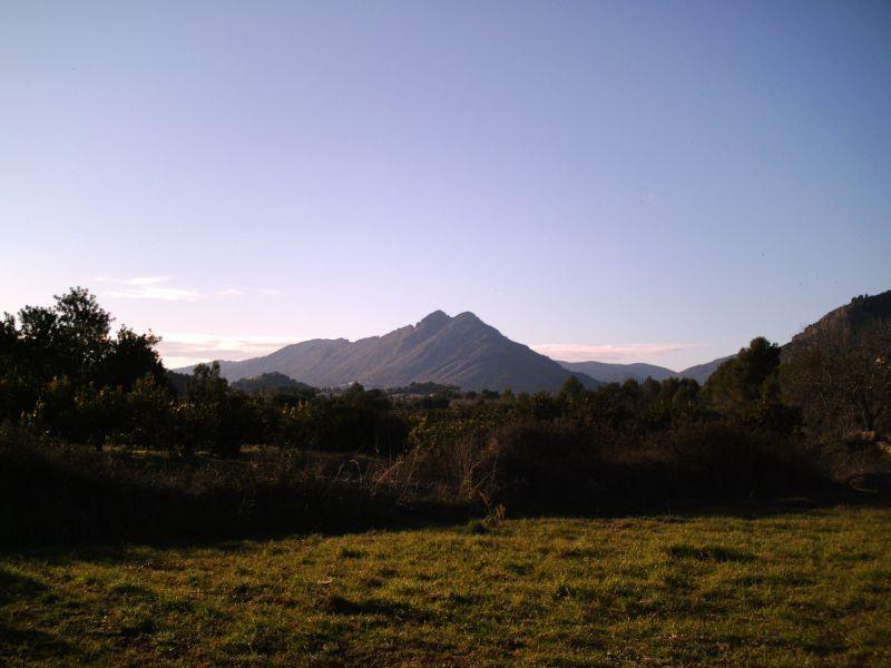 Земля в Халоне, Испания, 10000 м2 - фото 1