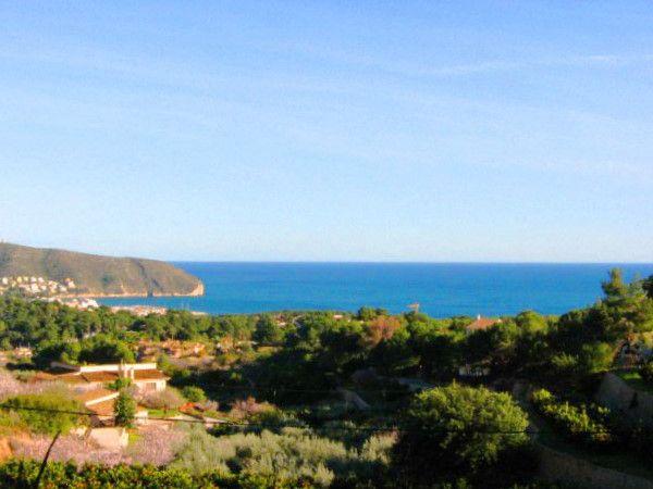 Земля в Морайре, Испания, 1600 м2 - фото 1