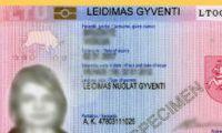 В Литве упростили получение ВНЖ для иностранцев