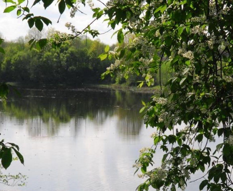 Земля в Огрском крае, Латвия, 13817 м2 - фото 1