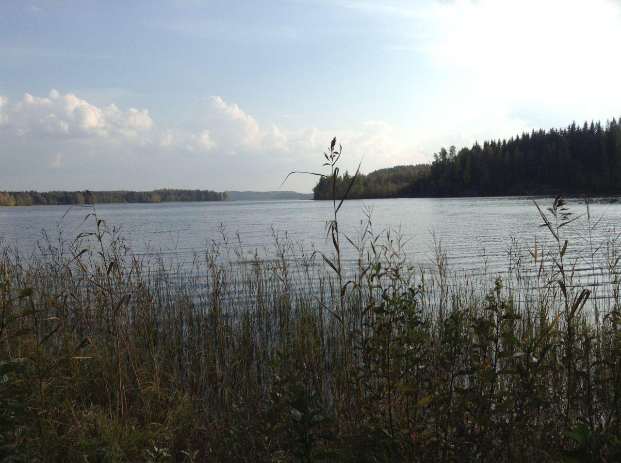 Земля в Симпеле, Финляндия, 9100 м2 - фото 1