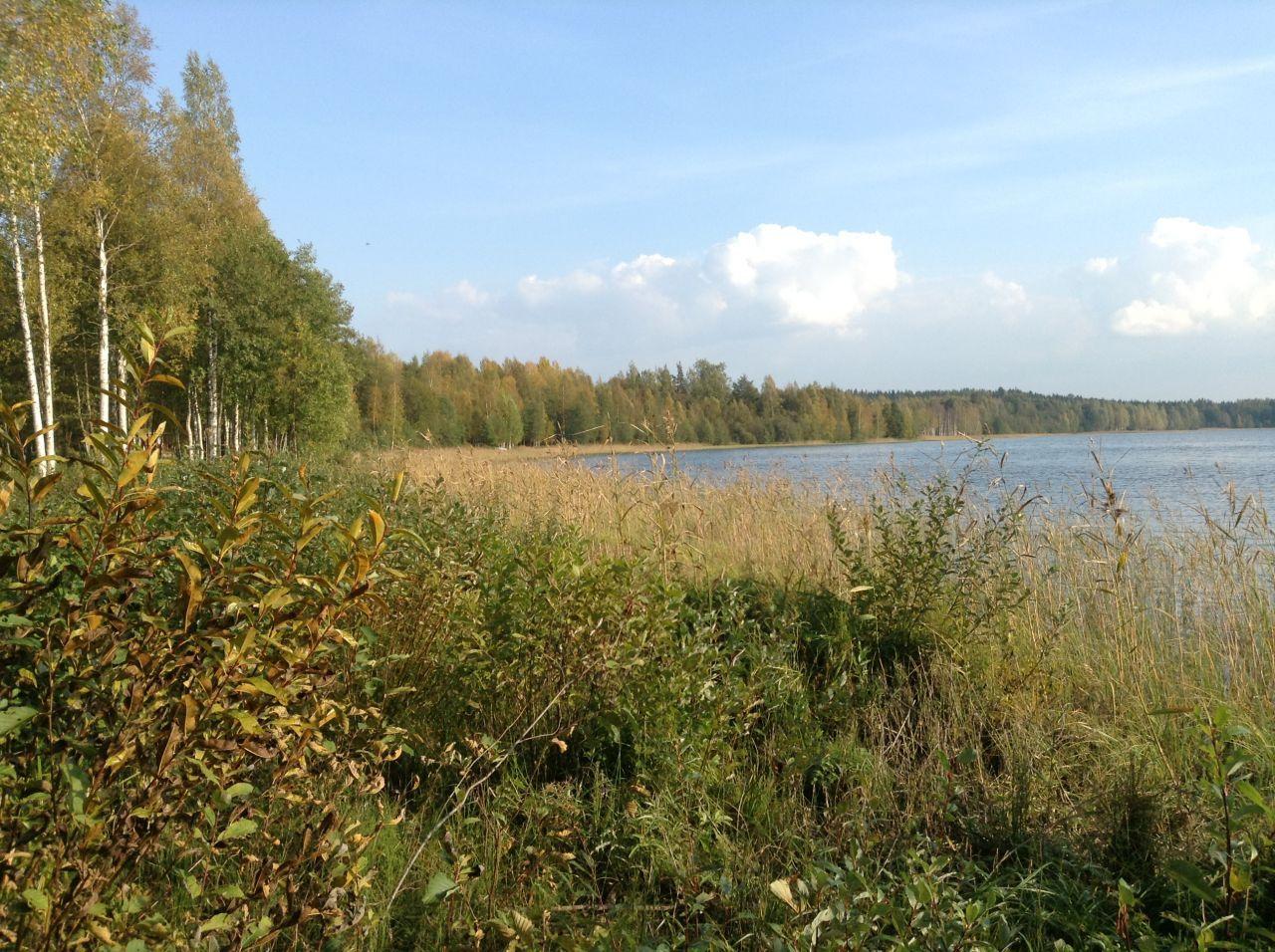 Земля в Симпеле, Финляндия, 9100 м2 - фото 2