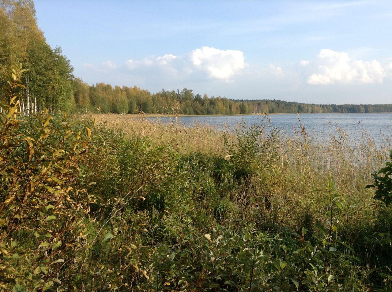 Земля в Симпеле, Финляндия, 9100 м2 - фото 3