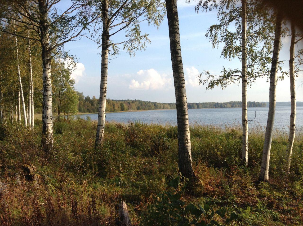 Земля в Симпеле, Финляндия, 9100 м2 - фото 4