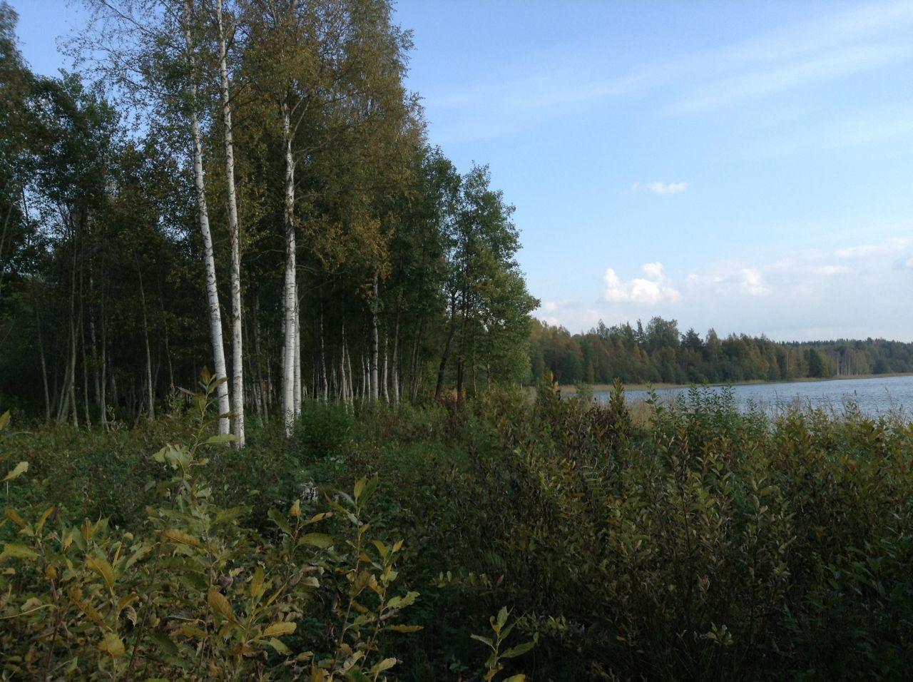 Земля в Симпеле, Финляндия, 9100 м2 - фото 6