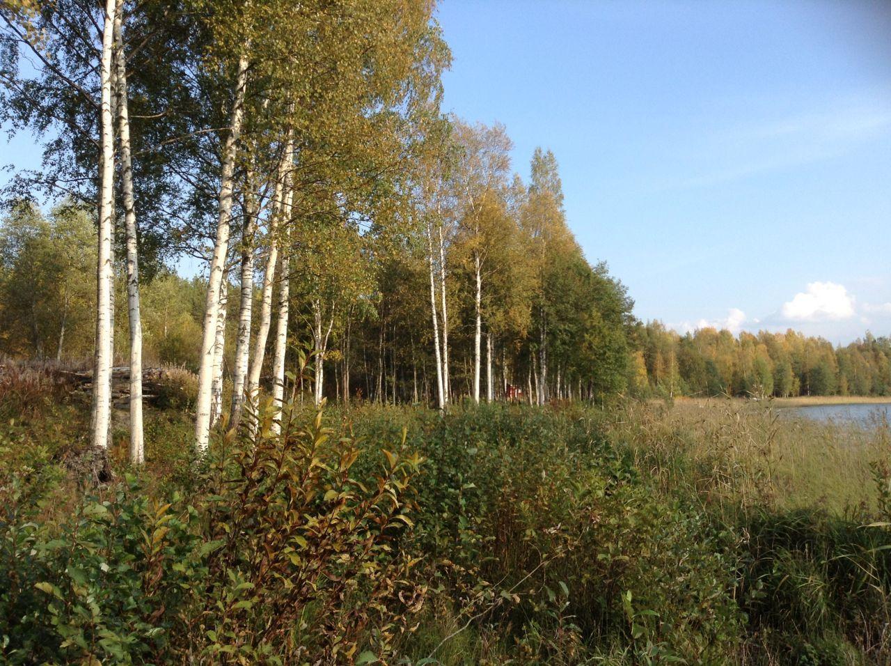 Земля в Симпеле, Финляндия, 9100 м2 - фото 7