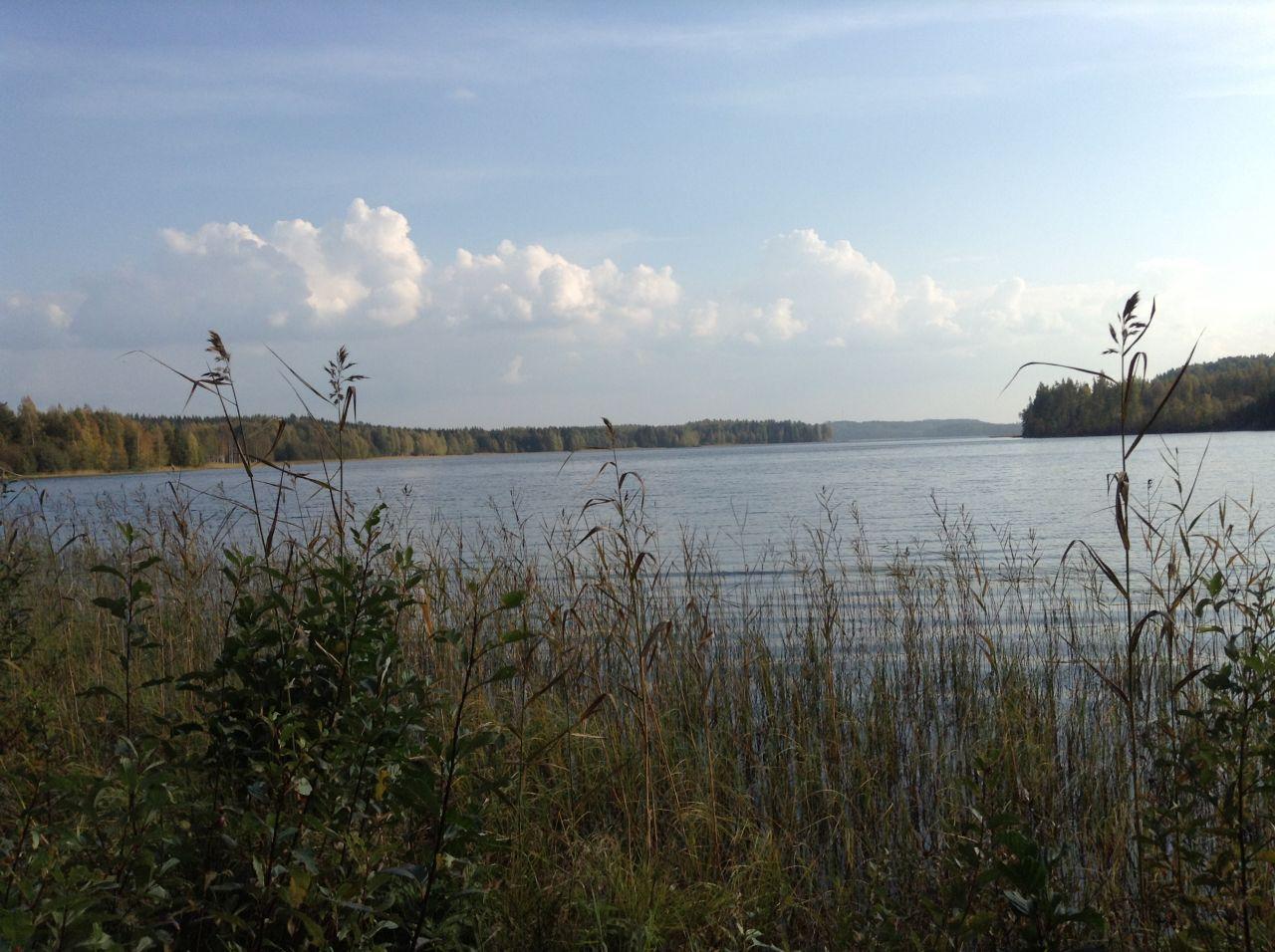 Земля в Симпеле, Финляндия, 9100 м2 - фото 8