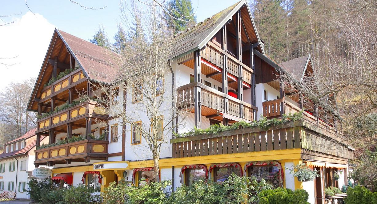 Отель, гостиница во Фройденштадте, Германия, 760 м2 - фото 1