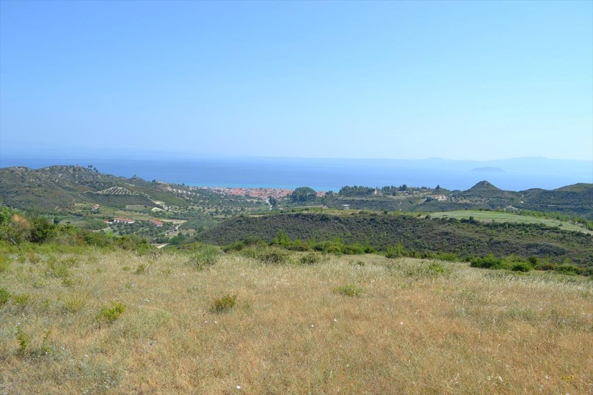 Земля на Кассандре, Греция, 7378 м2 - фото 1