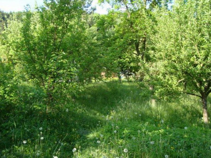 Земля в Карловых-Варах, Чехия, 675 м2 - фото 1