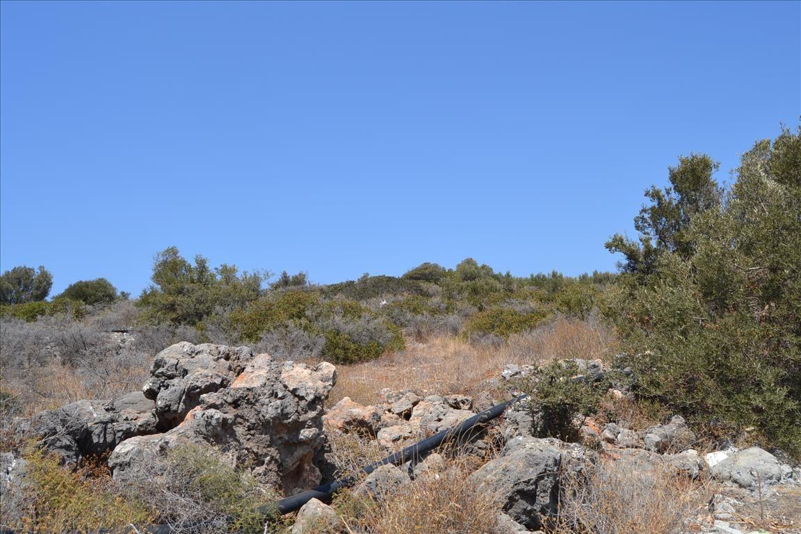 Земля в Ласити, Греция, 15990 м2 - фото 1