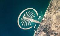 Пальма Джумейра остается самым дорогим районом Дубая по стоимости аренды