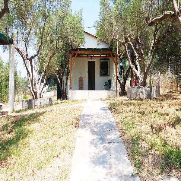 Дом в Халкидики, Греция, 25 м2 - фото 1