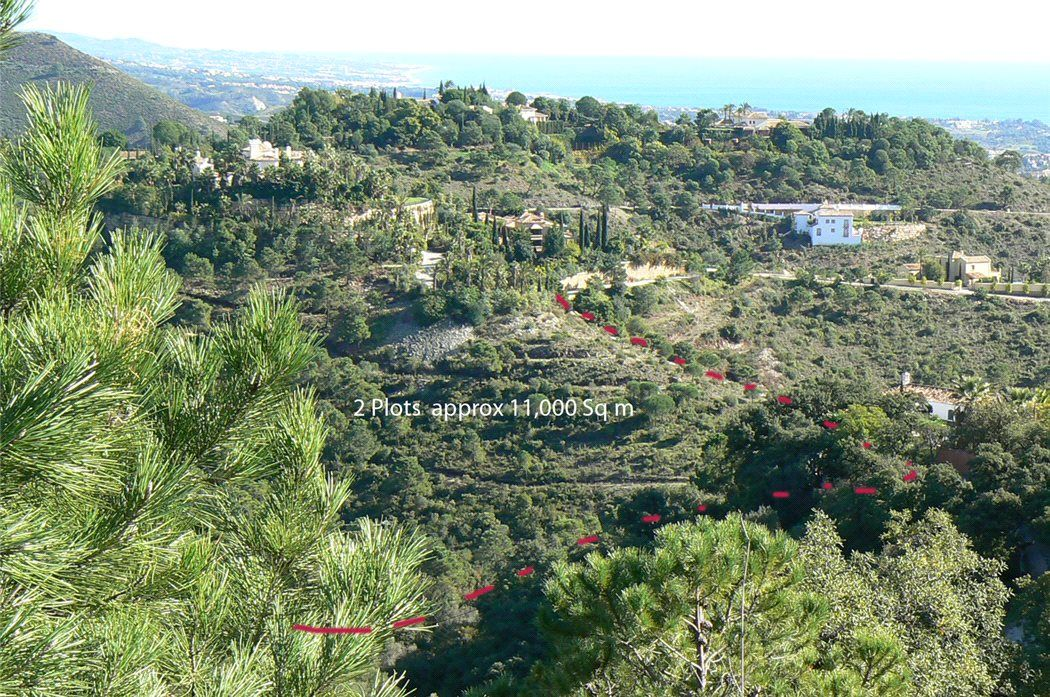 Земля в Малаге, Испания, 58 сот. - фото 1