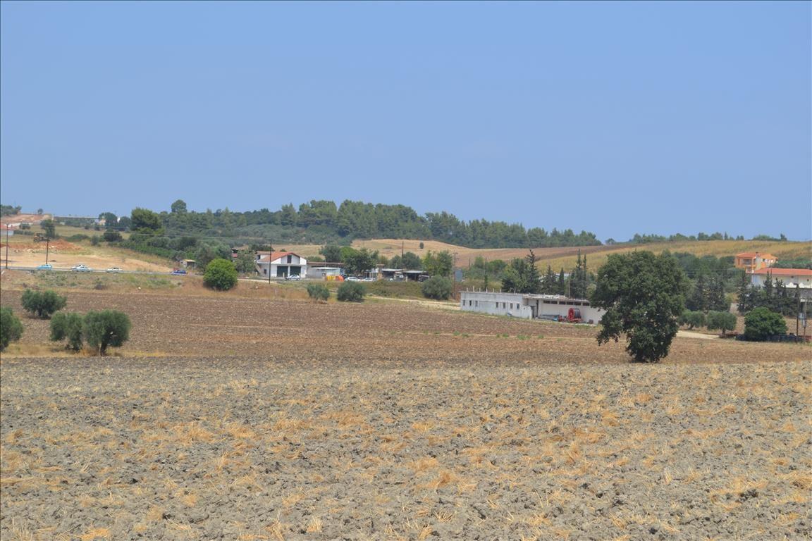 Земля на Кассандре, Греция, 6300 м2 - фото 1