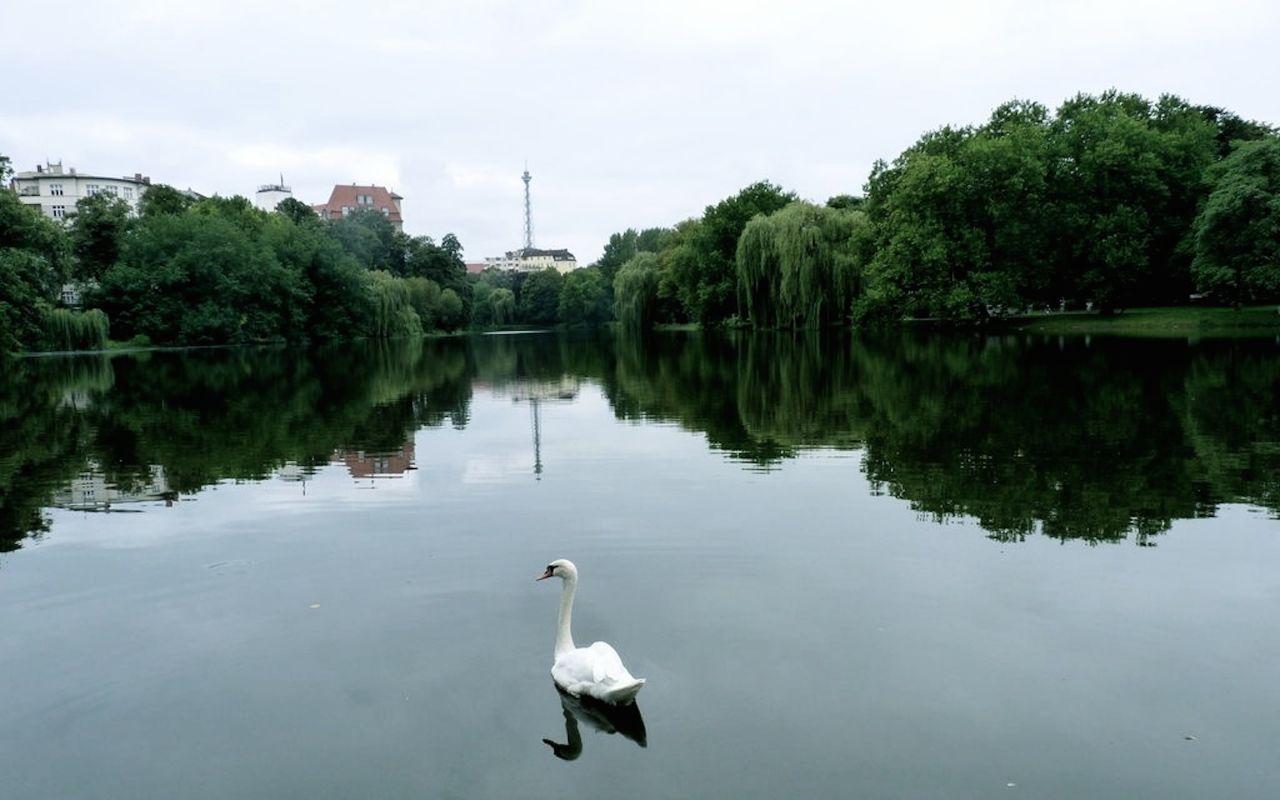Апартаменты в Берлине, Германия, 410 м2 - фото 1