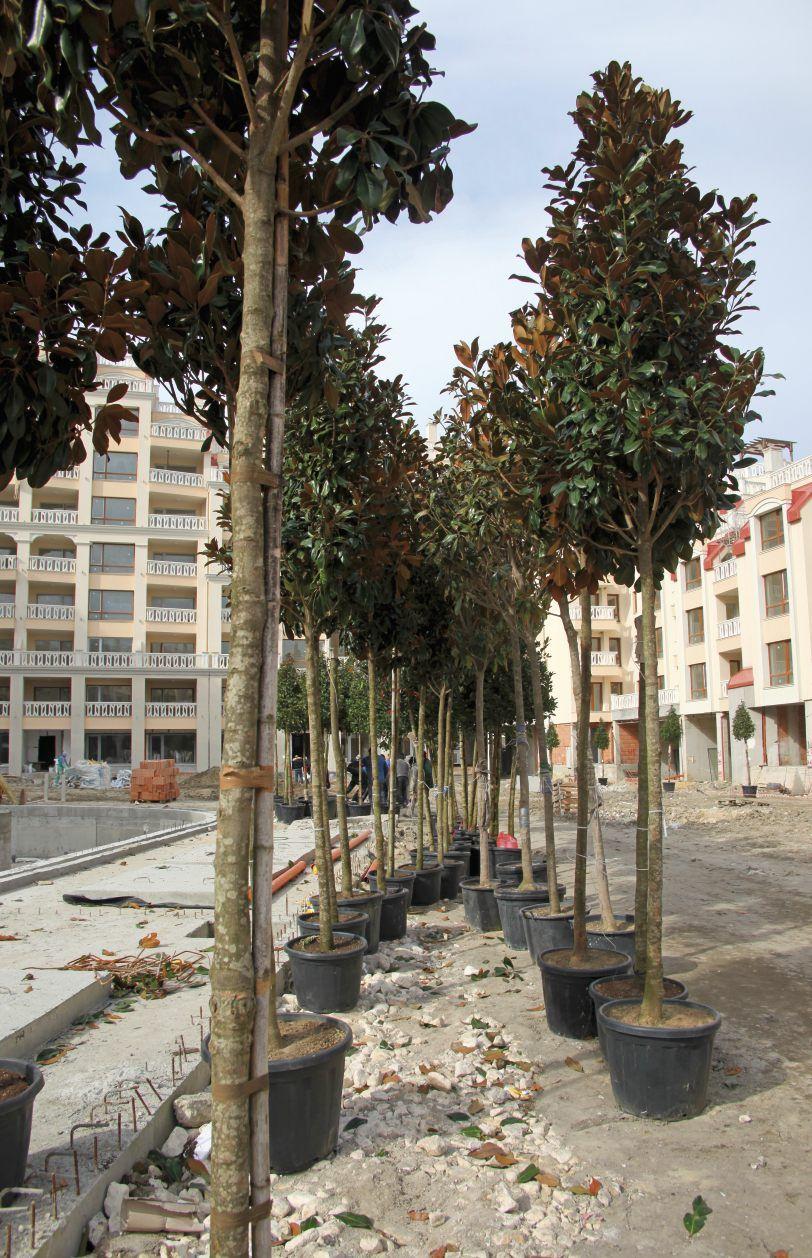 Апартаменты в Варне, Болгария, 101 м2 - фото 1