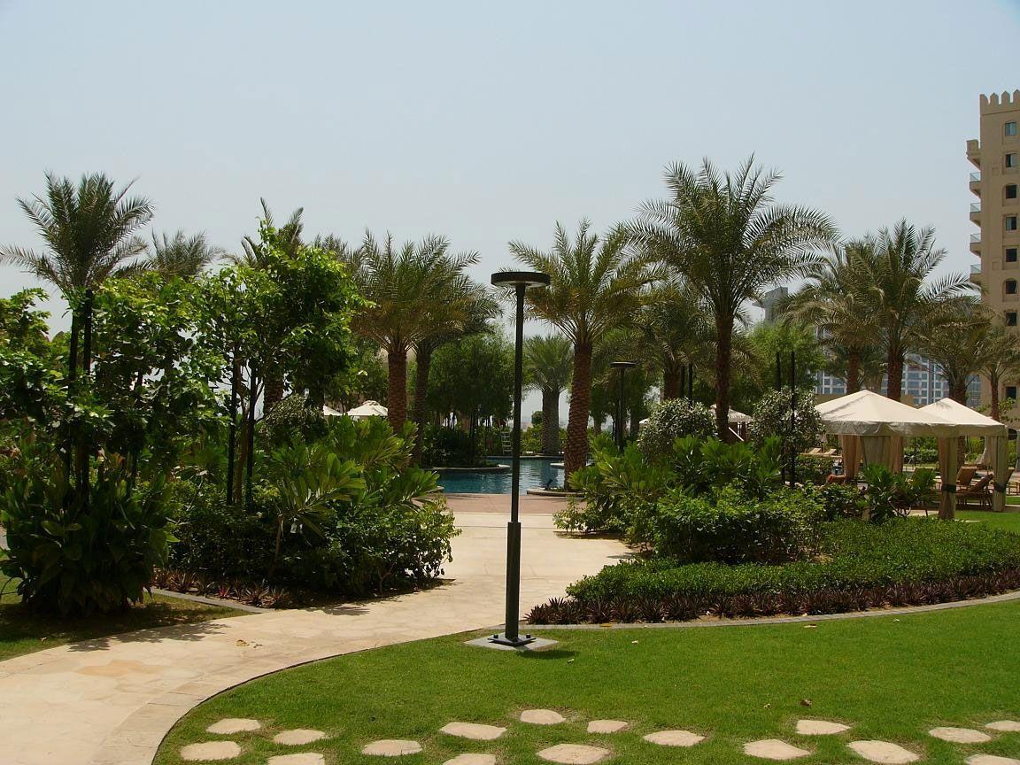 Отель, гостиница в Дубае, ОАЭ, 1081 м2 - фото 1