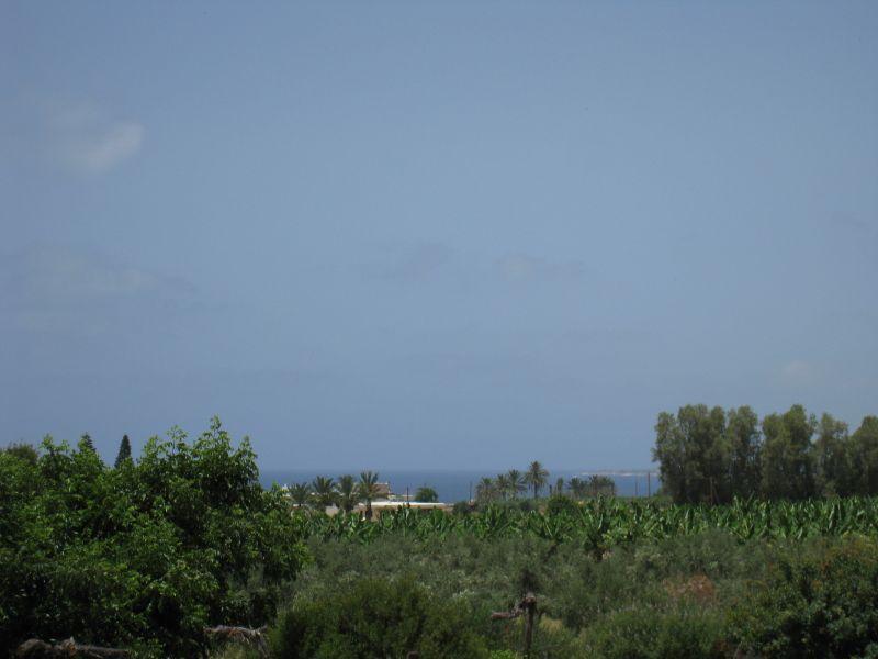 Земля в Пафосе, Кипр, 3350 м2 - фото 1