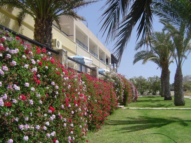Коммерческая недвижимость в Пафосе, Кипр, 2000 м2 - фото 1