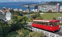Население Новой Зеландии увеличивается за счет рекордного прироста числа мигрантов