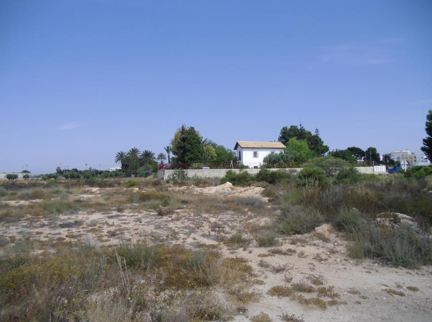 Земля в Аликанте, Испания, 10200 сот. - фото 1