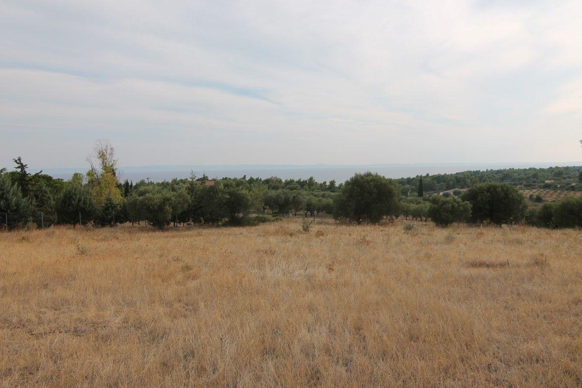 Земля в Халкидики, Греция, 6500 м2 - фото 1