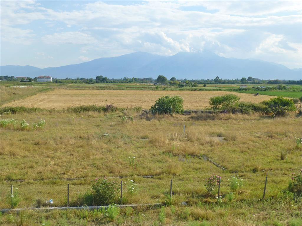 Земля в Пиерии, Греция, 4797 м2 - фото 1