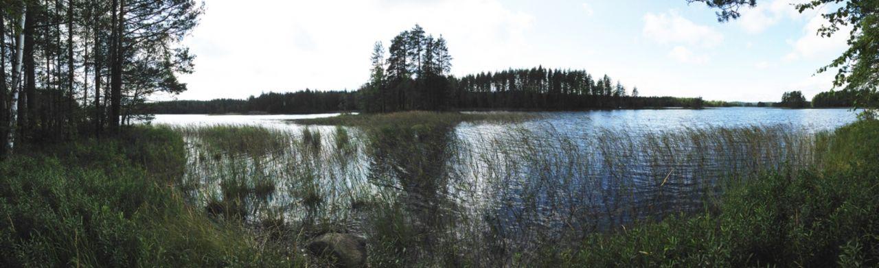 Земля в Руоколахти, Финляндия, 5220 м2 - фото 1