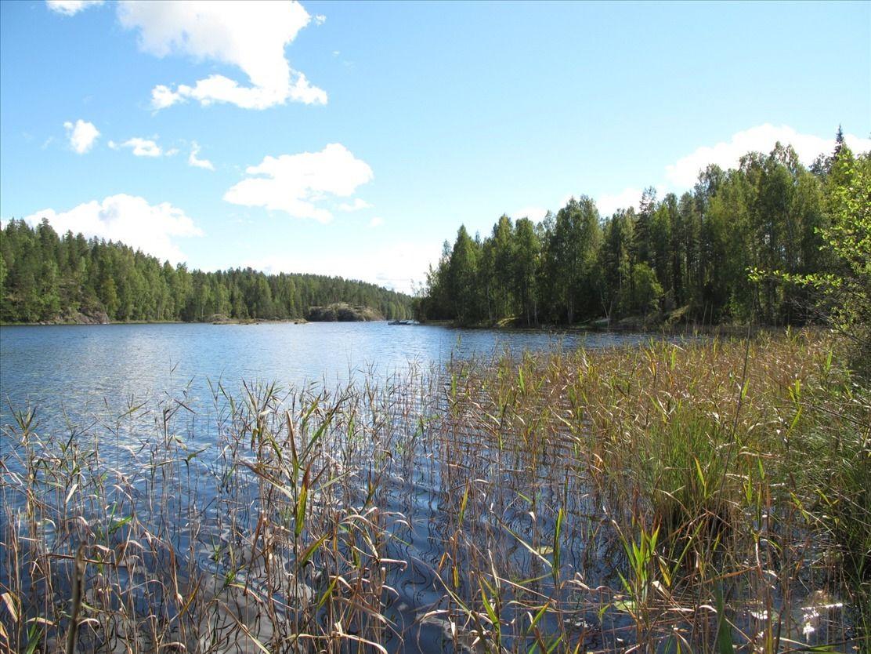 Земля в Рюхала, Финляндия, 165250 м2 - фото 1