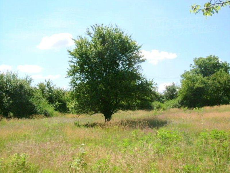 Земля в Добриче, Болгария, 1 м2 - фото 1