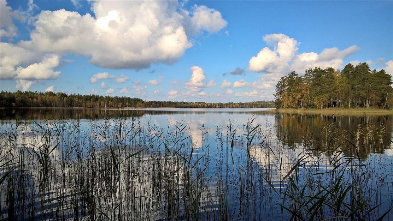 Земля в Юва, Финляндия, 8650 м2 - фото 1