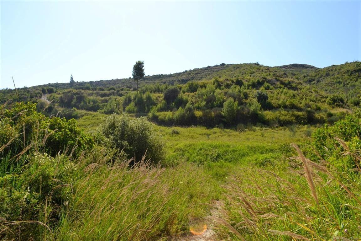 Земля Халкидики-Кассандра, Греция, 11142 сот. - фото 1