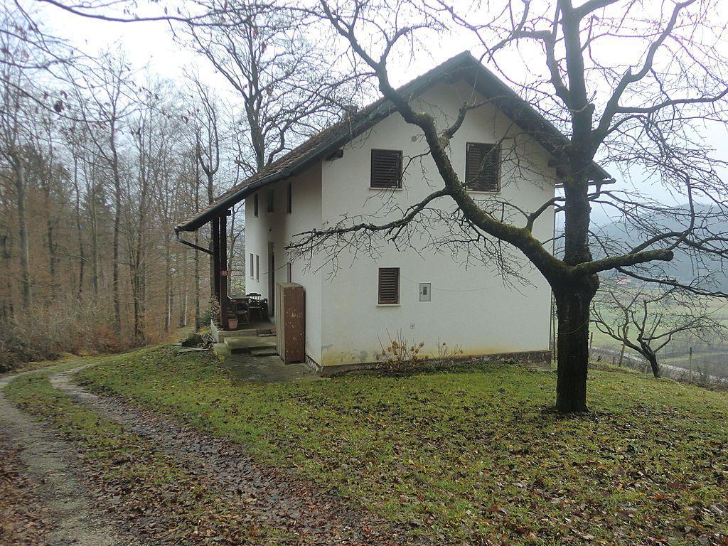 Дом в Рогашка-Слатине, Словения, 703 м2 - фото 1