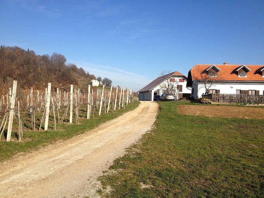 Коммерческая недвижимость в Словень-Градеце, Словения, 739 м2 - фото 1