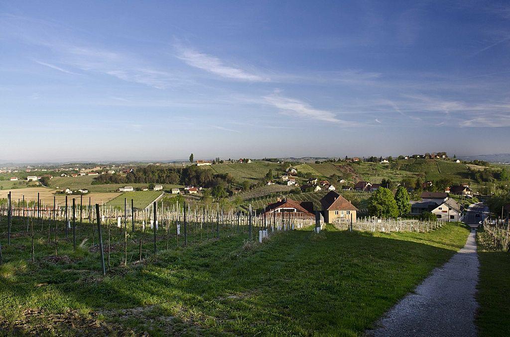 Коммерческая недвижимость в Медводе, Словения - фото 1