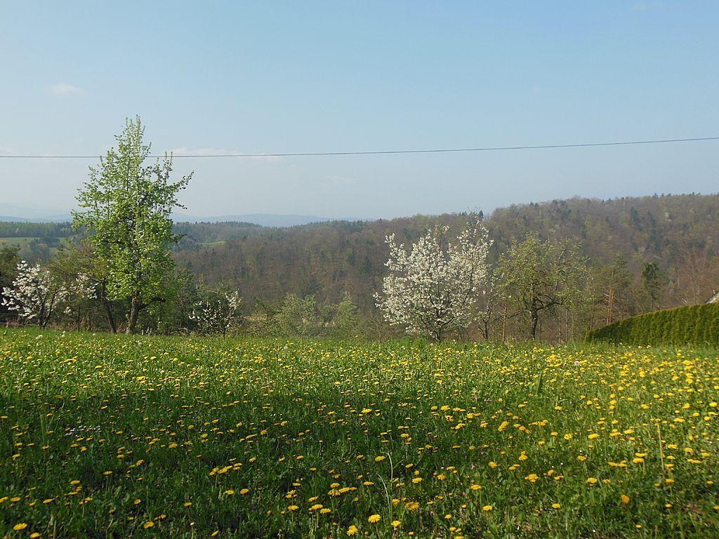 Земля в Иванчна-Горице, Словения, 878 м2 - фото 1