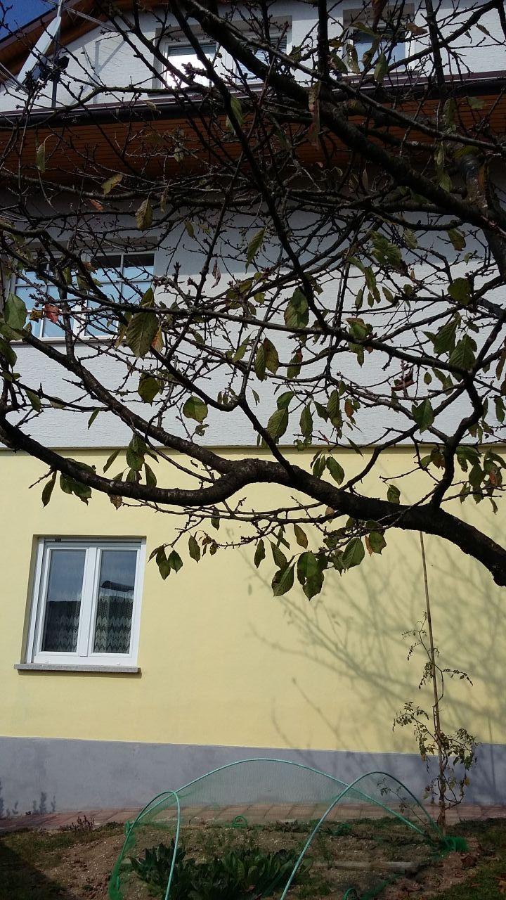 Дом в Любляне, Словения, 225 м2 - фото 1